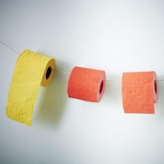 RENOVA - lot de 6 rouleaux de papier toilette jaune