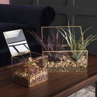 Boîte terrarium métal doré 10,3x10,3xh10,3cm