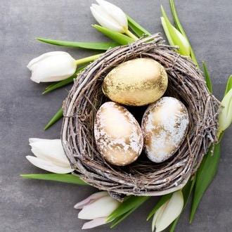 20 serviettes 33x33 cm nid doré