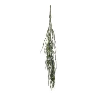 Chute artificielle rhipsalis 65cm