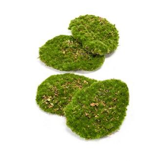 Lot de 4 mousses végétales artificielles plates
