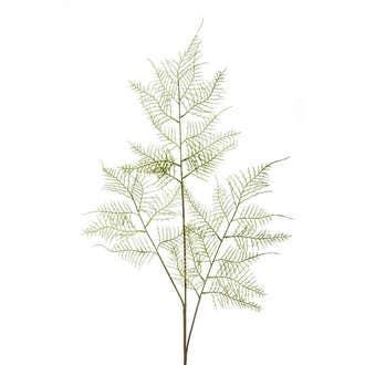 Tige artificielle asparagus plumeau ramifié 80cm