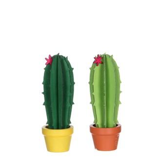 Cactus vert 2 assorti h14xd5cm