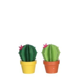 Cactus vert 2 assorti h8xd5cm