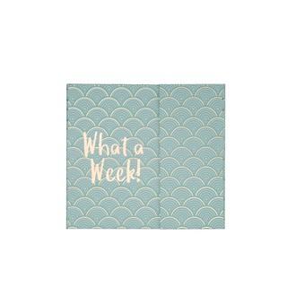 Kit semainier vert pastel what a week avec notes adhésives