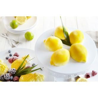 Silikomart - plaque de 6 moules 3d citrons