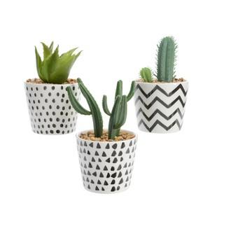 Cactus assortis artificiels avec pot décoré noir et blanc