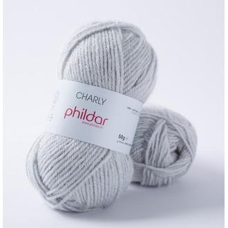 Phildar - pelote de laine charly gris givre - 50g