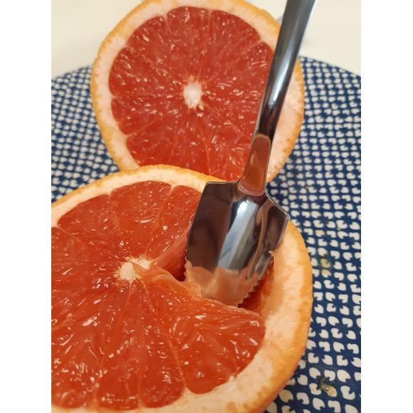 Cucchiaio per pompelmo in acciaio inox con bordi seghettati