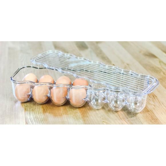 Porta 14 uova in plastica 11x37x8cm