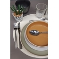 Assiette calotte curry brillant 19 cm