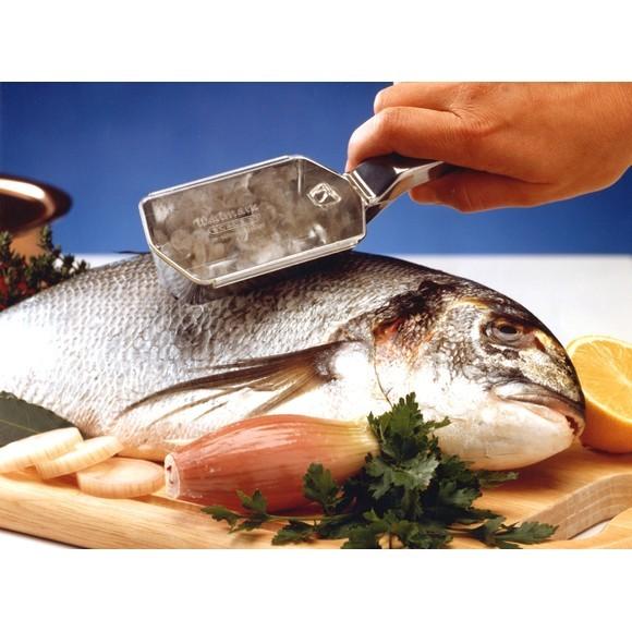 Ecailleur à poissons en inox Scalex