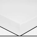 Lenzuolo con angoli singolo in cotone percalle bianco avorio