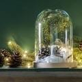 Cloche en verre avec socle en bois brut Hella 23x17cm