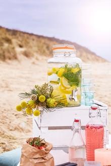 Fontaine à boisson en verre transparente 8l