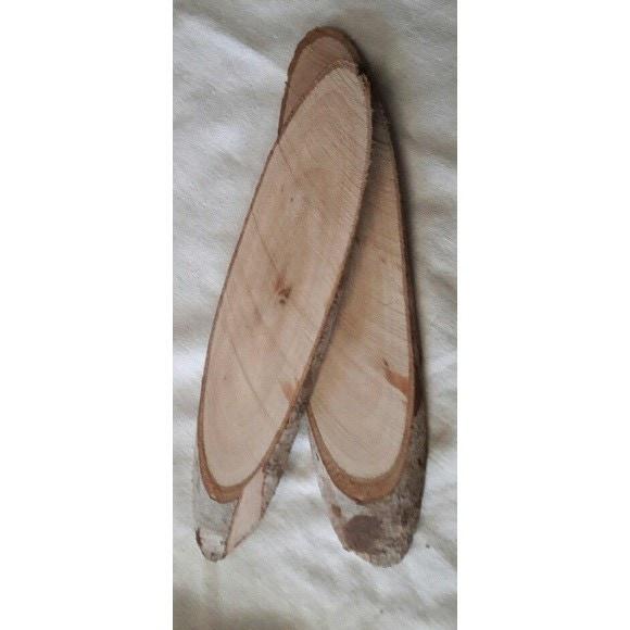 Lot de 5 tranches de bois ovales naturelles