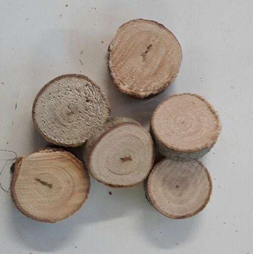 Set de 50 mini tranches de bois naturel 2-3cm
