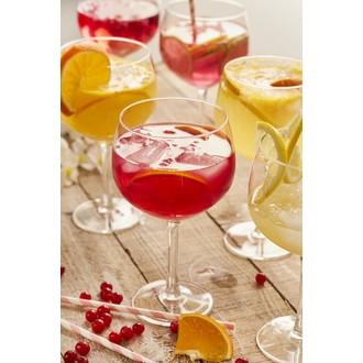 6 verres à gin en verre 65cl