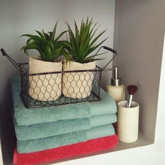 Set de 2 plantes avec panier
