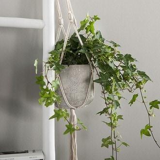 Suspension pour plante en macramé écru Ø5xh115cm
