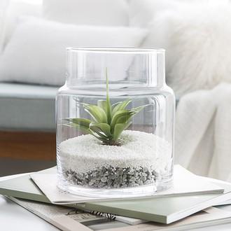 Terrarium jarre en verre transparent Ø17xH19,5cm
