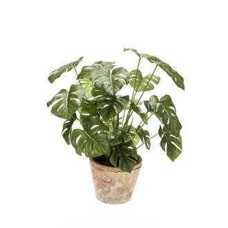 Monstera artificiel pot terre cuite d16xh50cm