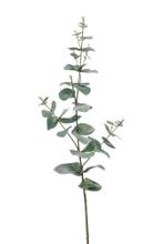 Achat en ligne Tige artificielle eucalyptus ramifié vert/gris 68cm