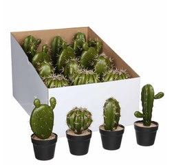 Achat en ligne Cactus artificiel en pot plastique d9xh21cm