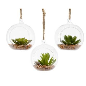 Boule en verre avec succulente à suspendre d8xh18cm