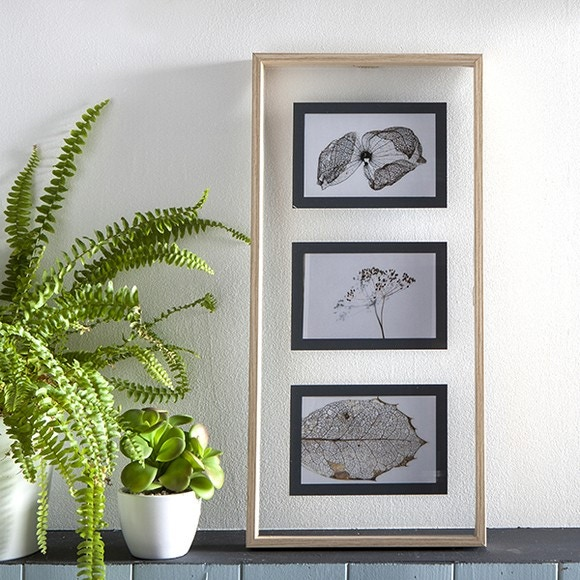 acquista online Cornice foto 3 viste 10x15cm