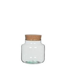 Achat en ligne Terrarium bocal en verre avec bouchon en liège Chela 19x19cm