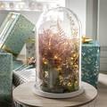 Cloche décorative en verre socle bois blanc Hella 21,5xh30cm