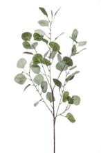 Achat en ligne Branche artificielle d'eucalyptus vert grisé 87cm