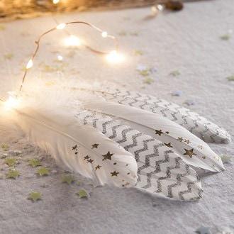 6 plumes blanches étoile 16-18 cm