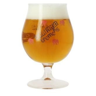 Verre à bière Delirium 33cl