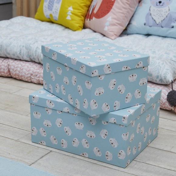 Lot de 2 boites en carton moutarde 35x27 et bleu 29x21