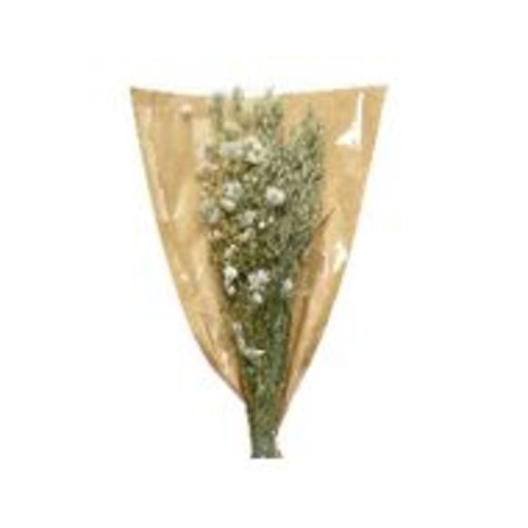 Bouquet de fleurs blanches séchées