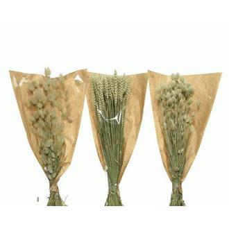 Bouquet de blés séchés coloris assortis