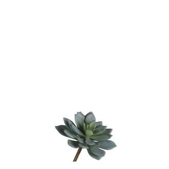 Pic artificiel ucculente gris 13x10cm
