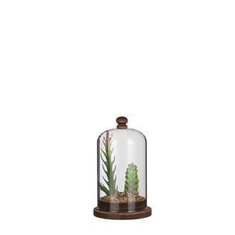 Cloche garnie avec succulente artificielle 15,5x9cm