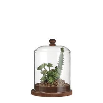 Cloche garnie avec succulente artificielle 14,5x11cm
