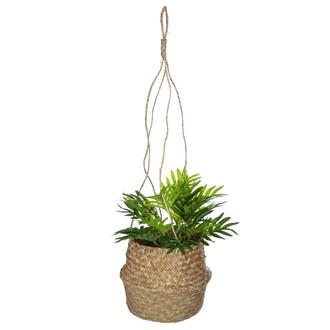 Cache pot seagrass