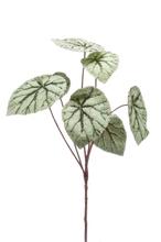 Achat en ligne Branche ramifiée artificielle de bégonia 60cm