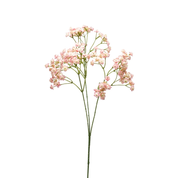 Tige ramifiée de gypsophile rose 68cm