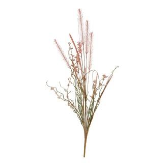 Fleurs séchées erica saumon 160xd5cm