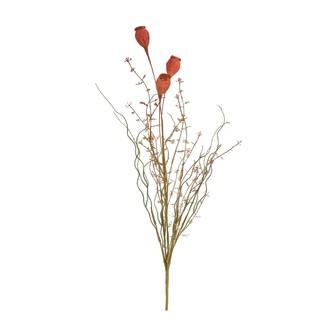 Fleurs séchées coquelicot saumon 160xd5cm