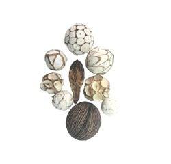 Achat en ligne Mélange de boules décoratives naturelles Shola Ball