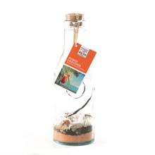 Achat en ligne Mélange cocktail en carafe Caraïbes 160g