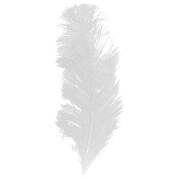 Achat en ligne Plume d'autruche blanche 30-35cm