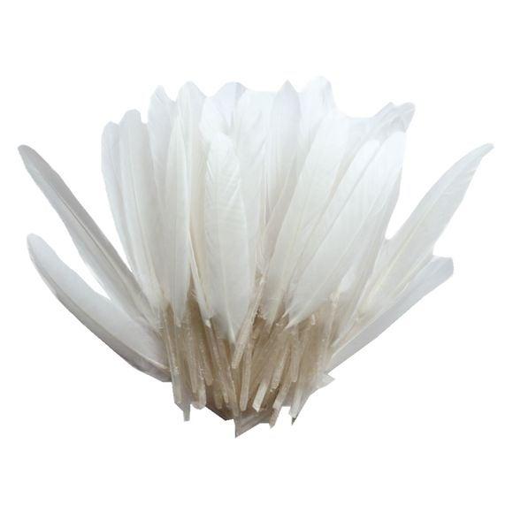 Achat en ligne Plumes d'indien blanc 15cm 10gr
